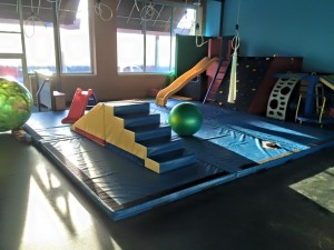 chicago pediatric therapy & wellness center- gym pic